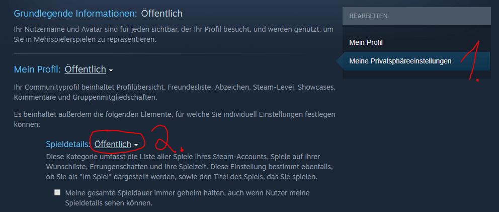 Steam Account mit Vortex verbinden